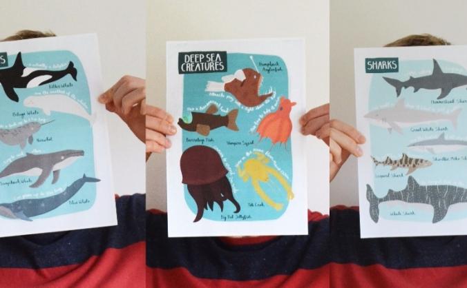 Hannah Stevens Illustration - New Print Launch