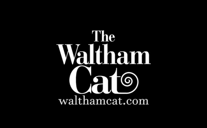 The Waltham Cat NCTJ apprenticeship programme