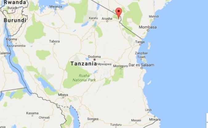 Service Project to Tanzania