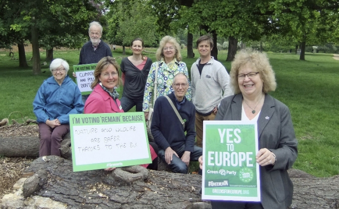 Help Green Party in Richmond By-election