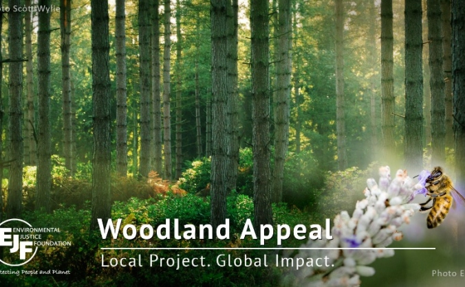 EJF Woodlands Appeal