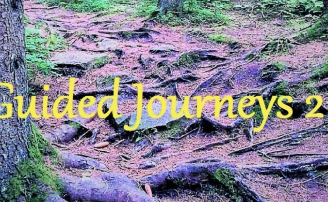 CD Guided Journeys 2 by David Tyrrell