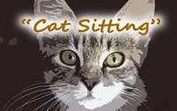 Cat Sitting: A community group Short Film - Join us and help make something different!!