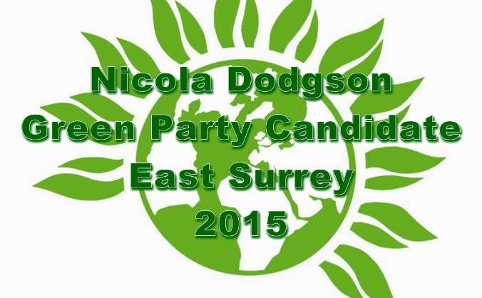 Help Elect a Green MP in East Surrey
