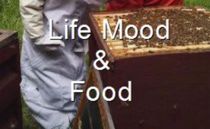 Life Mood & Food - book