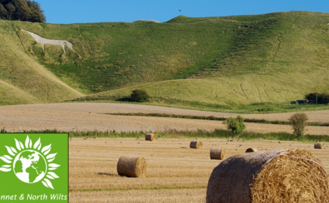 Give Chippenham a Green Party choice in 2015