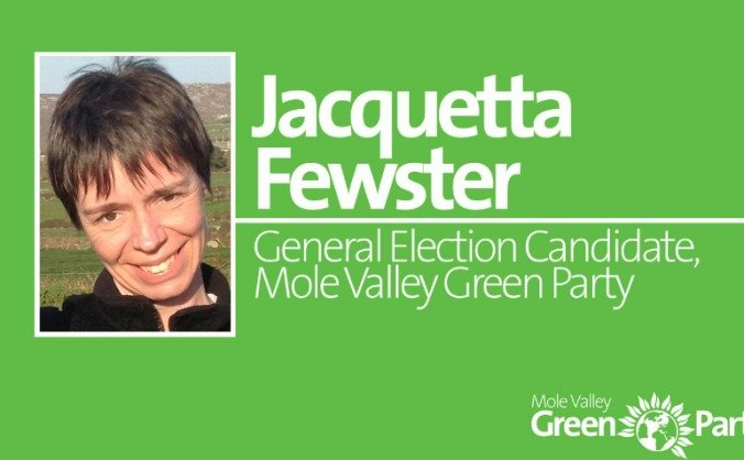 Help elect a Green MP in Mole Valley