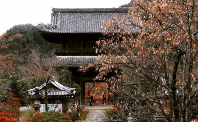 Japanese Gardens and Dojo