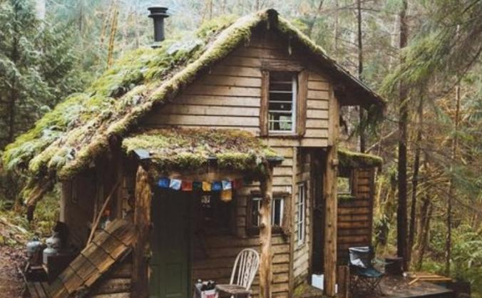 Alex's Log Cabins