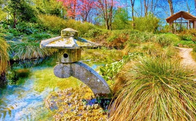 Save Gatton's Japanese Garden