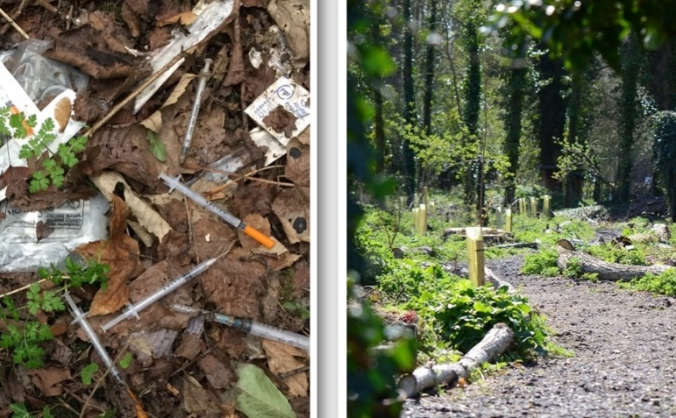 Brickmakers Wood wildlife regeneration project