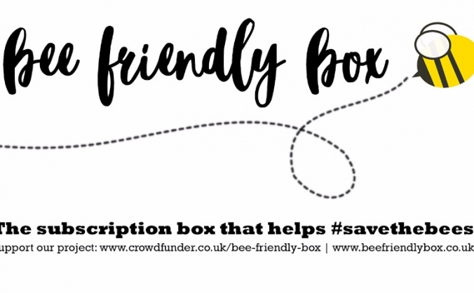 Bee Friendly Box