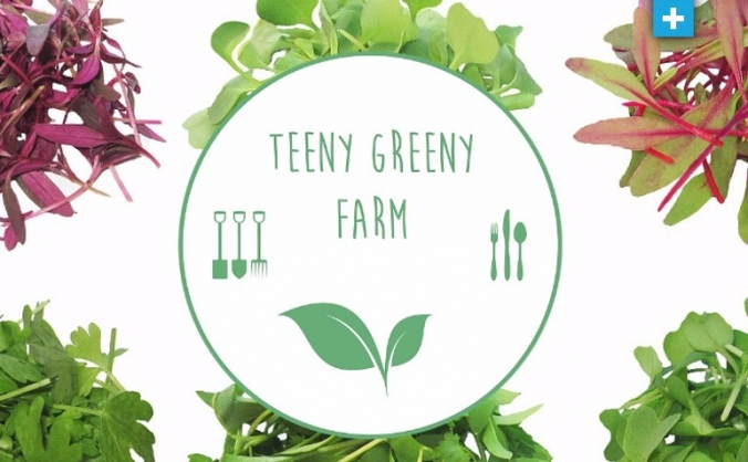 Teeny Greeny Urban Farm Crowdfunder