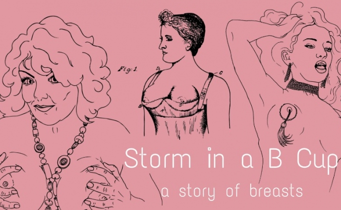 Storm in a B Cup: a story of breasts