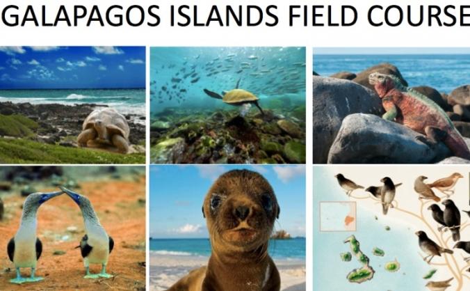 University Field Trip to Galapagos