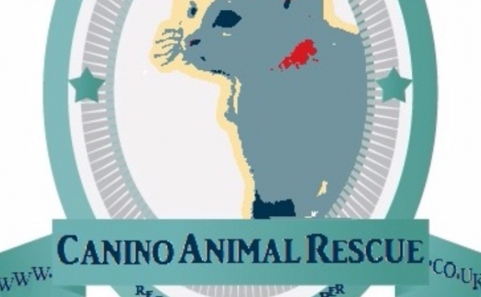Canino Animal Rescue