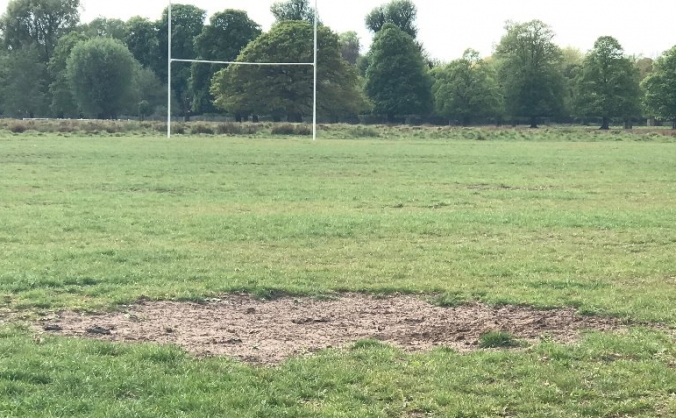 Teddington RFC  - Pitch Perfect