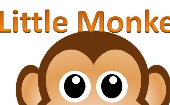 Little Monkey Clothing Project
