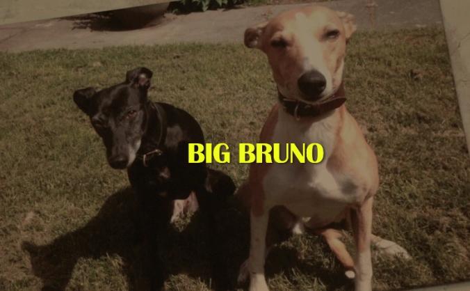 BIG BRUNO - Short Documentary