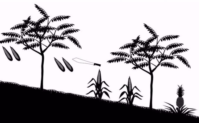 Sustainable farming to save rainforests: Honduras