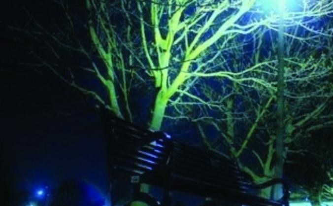 Daniel Sinclair - Edinburgh Fringe Festival