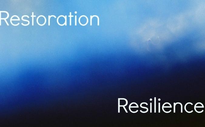 Restoration: Resilience Healing 4 Black Folks/PoC