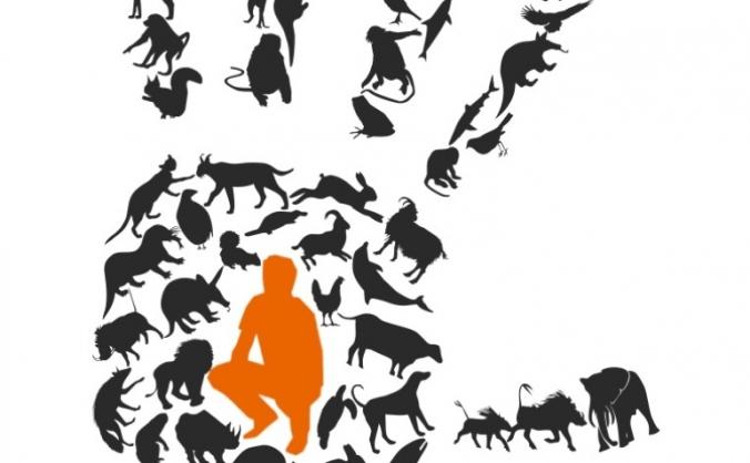 Animal Neighbours