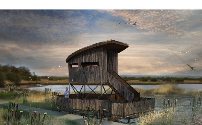 Tower Hide at Shapwick Heath