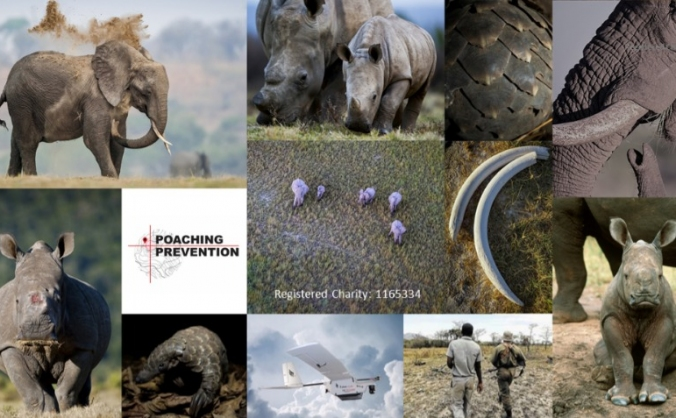 Poaching Prevention - saving endangered species