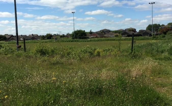 Woodlands Avenue football pitch renovation