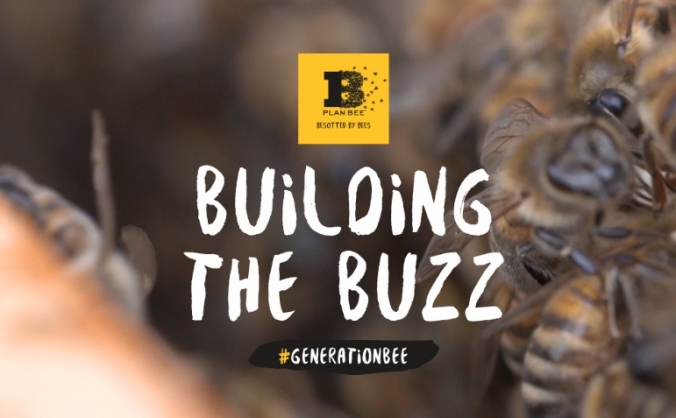 Plan Bee - Building the Buzz.