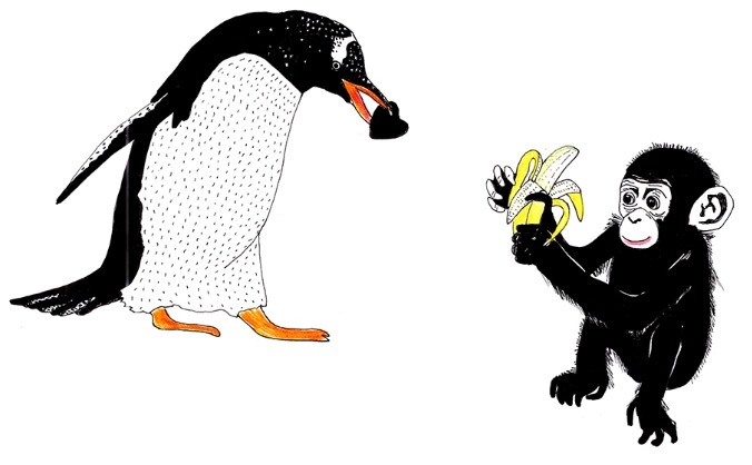 PENGUINS AND YOGA