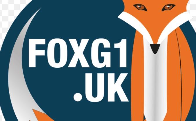 FoxG1 syndrome