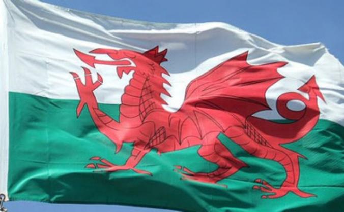 Welsh Men's National Curling Team