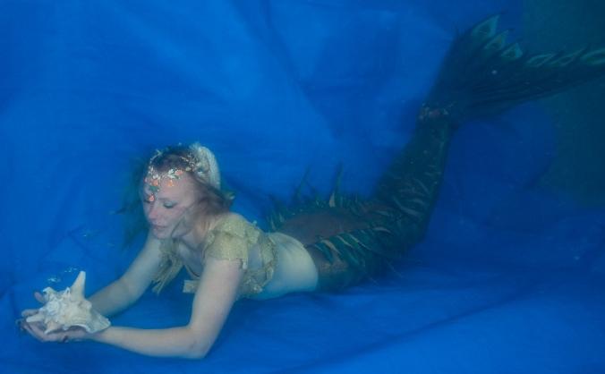 Miss Mermaid Yorkshire Marine Conservation Society