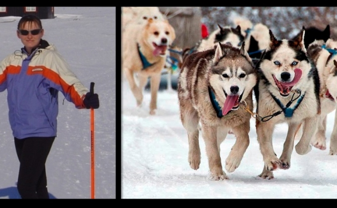 Charity dog sledding challenge in the Arctic