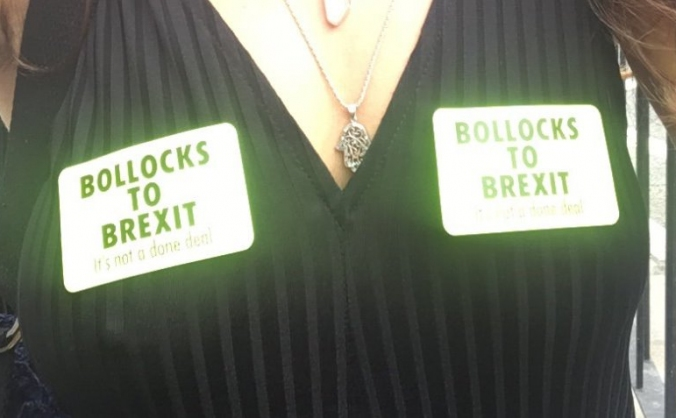 B*** To Brexit Stickers