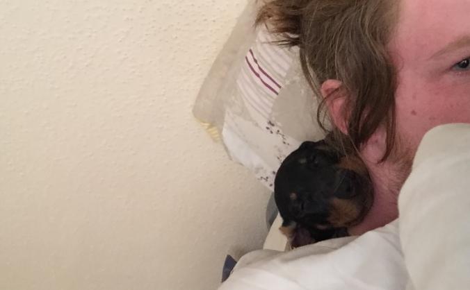 Help me get my dog back!!! :-(