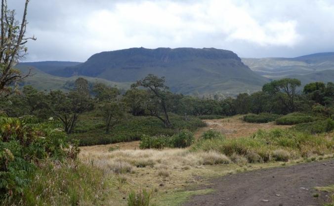 Mt. Kenya ½ Marathon