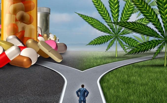 Medicinal Cannabis Reform Scotland Campaign
