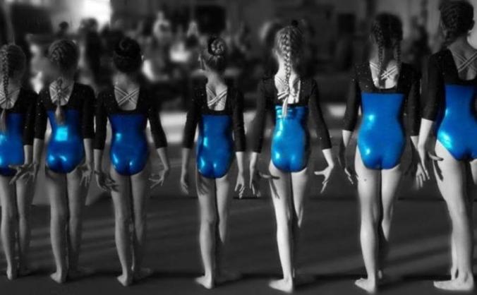 Save Gillingham Gymnastics Club!