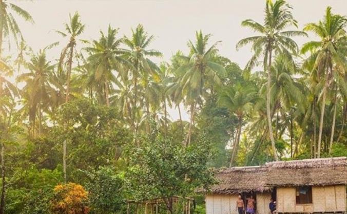 Gadaisu Coconut Project