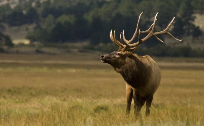 Labour Party Conference Colne Valley CLP Delegates
