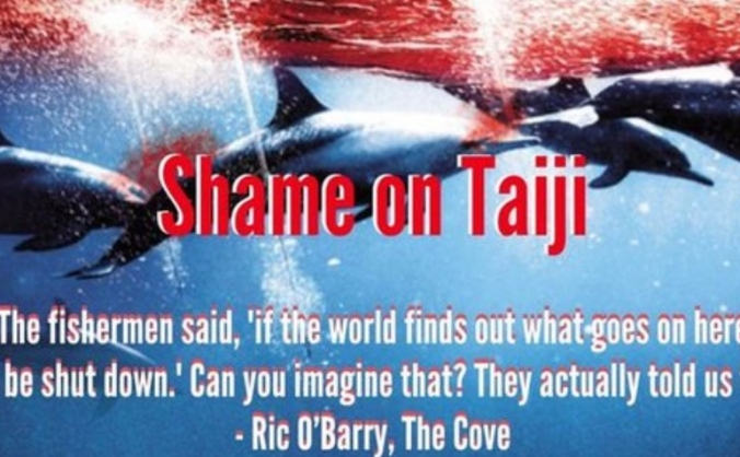 help the dolphins of taiji