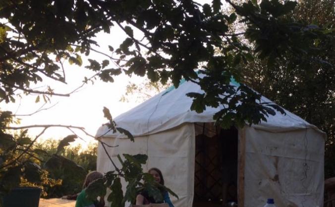 Lyla's Orchard School Yurt