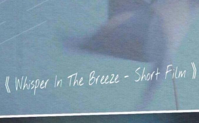 Whisper In The Breeze