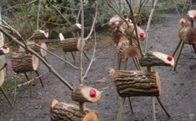 Scotswood Natural Community Garden