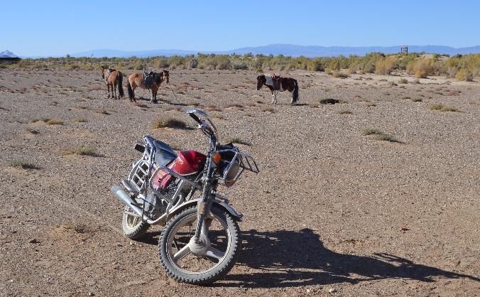 Motorbikes for Gobi Rangers