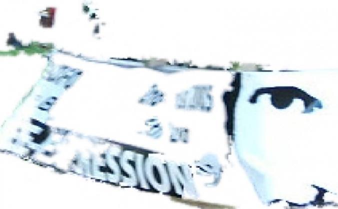 Free Expression Arts Festival