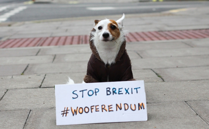 Wooferendum